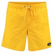 Boardshort O'Neill Men Vert Shorts Golden Yellow
