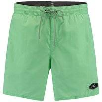 Boardshort O'Neill Men Vert Shorts Neo Mint