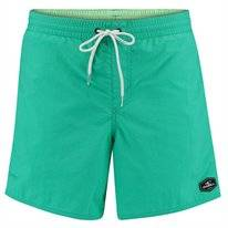 Boardshort O'Neill Men Vert Shorts Salina Green