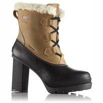 Sorel Women Dacie Lace Curry