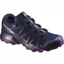 Trailrunningschuh Salomon Speedcross Vario 2 GTX Astral Damen