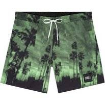 Boardshort O'Neill Men Bondey Green Aop