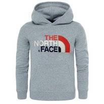Kinder Trui The North Face Youth Drew Peak PO Hoodie TNF Light Grey Heather