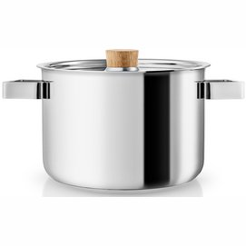 Eva Solo Nordic Kitchen Cooking Pot Stainless Steel 3 L
