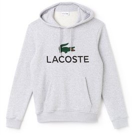 Trui Lacoste 1HS1 Hoodie Argent Chine
